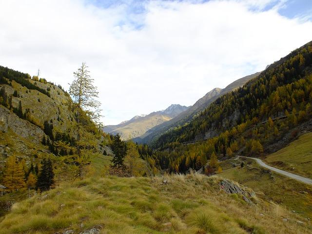 herkunft bernhardiner schweiz berg